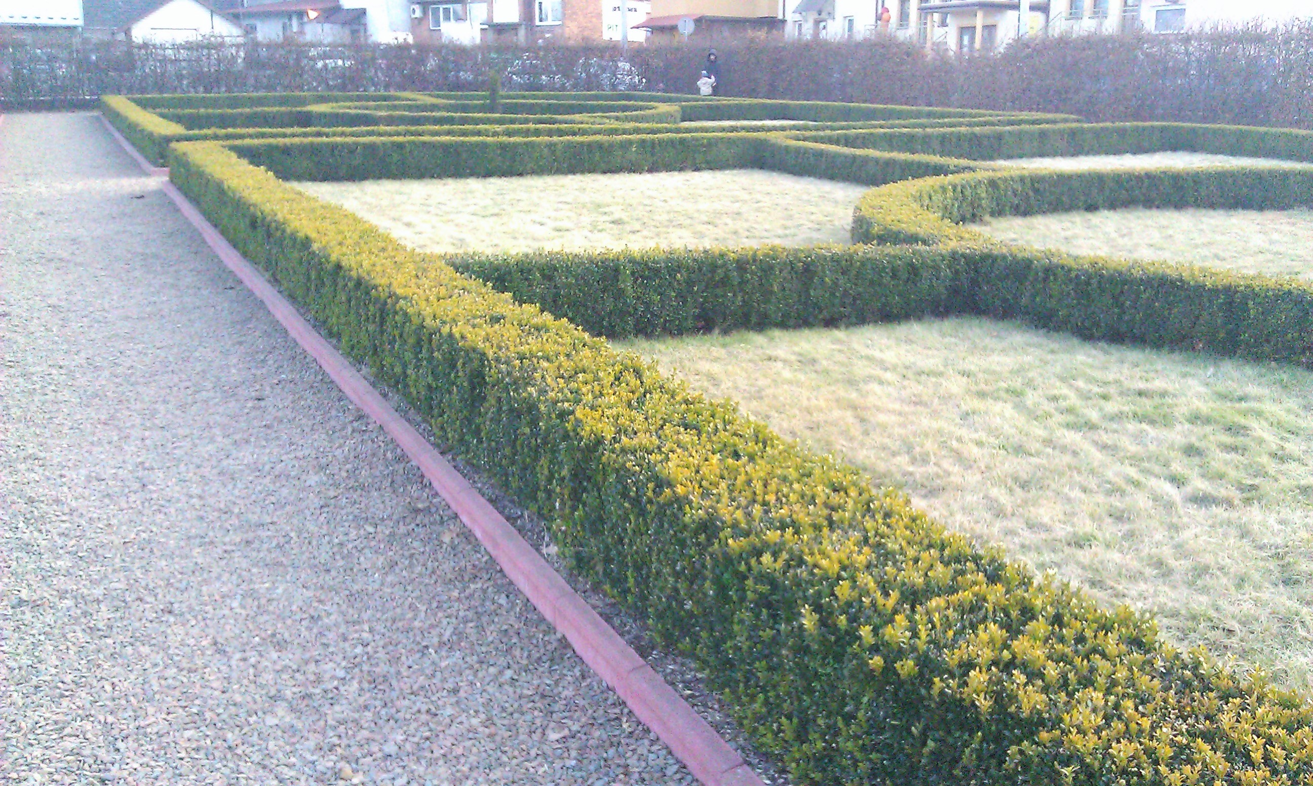 przestrzeń symetrycznie podzielona roslinami