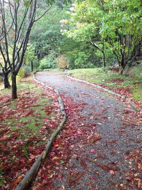 ścieżka żwirowa wygląda naturalnie, ale jest problematyczna w połączeniu z opadającymi liśćmi